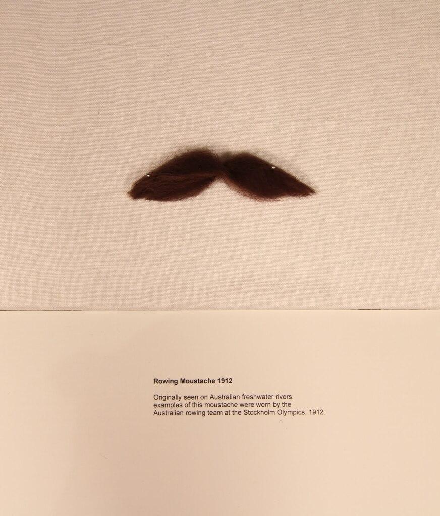 1 sports moustache